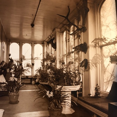 Circa early 20th century photograph of the Solarium at the Baldwin-Reynolds House Museum
